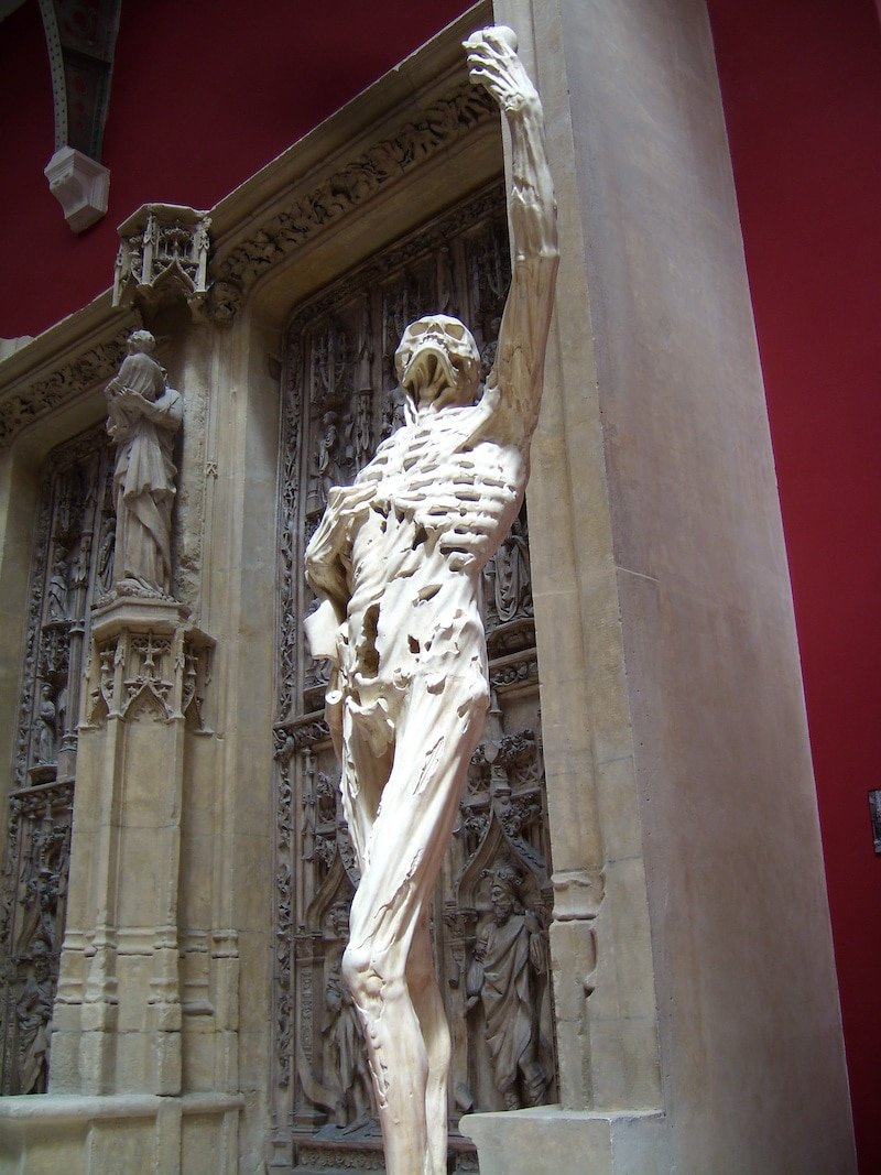 Cadaver Tomb of René of Chalon