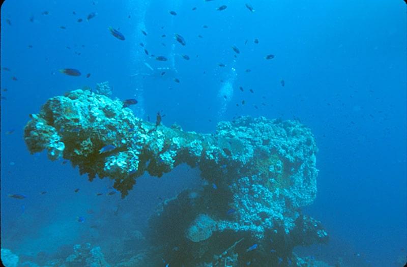 Bow_gun_of_the_Fujikawa_Maru_wreck,_Truk_Lagoon,_Micronesia