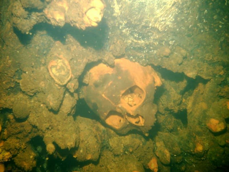 Skull inside wreck Truk Lagoon