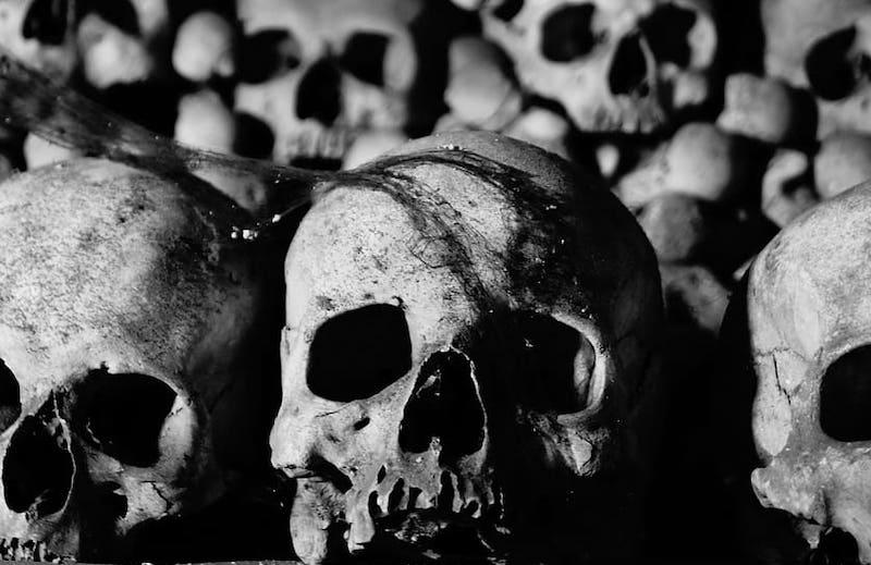 skulls ossuary luek