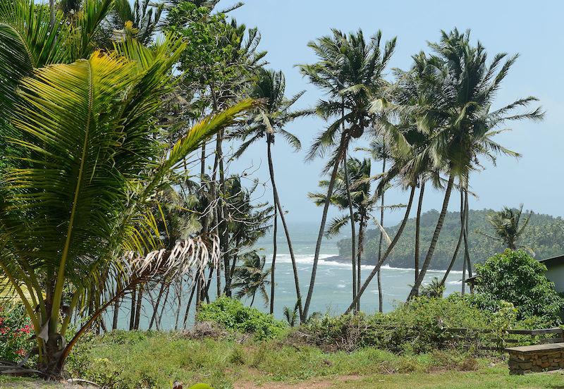 Île_du_diable_depuis_l'Île_Royale devils island