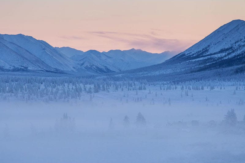 Oymyakon_forests The Coldest Settlement on Earth
